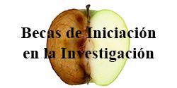Becas de Iniciaci�n en la Investigaci�n